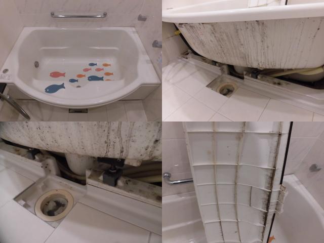 浴槽の中のクリーニング